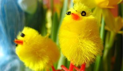 Z okazji Wielkanocy sklepy oszukują na potęgę