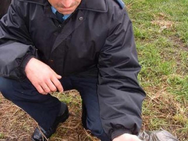 Policjanci uwolnili ślimaki winniczki