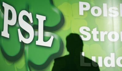 Rodziny szefów PSL opanowały spółki