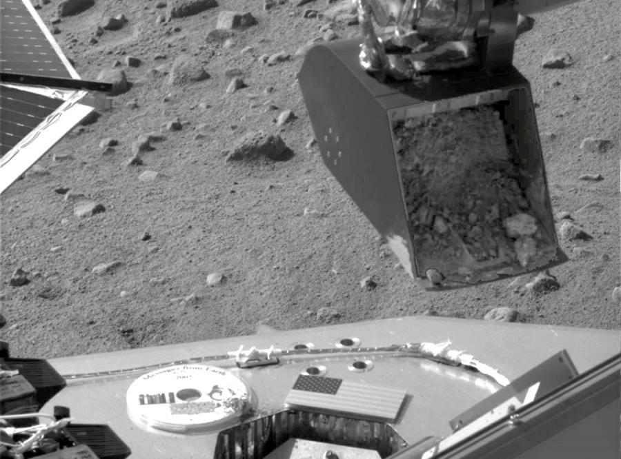 Czy na Marsie rosły szparagi?