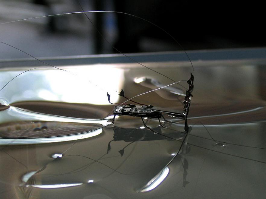 Niezatapialna nanorobotyka