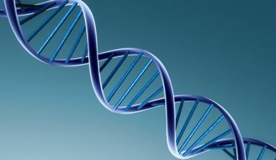 DNA pomoże nam dobrać optymalnego partnera?